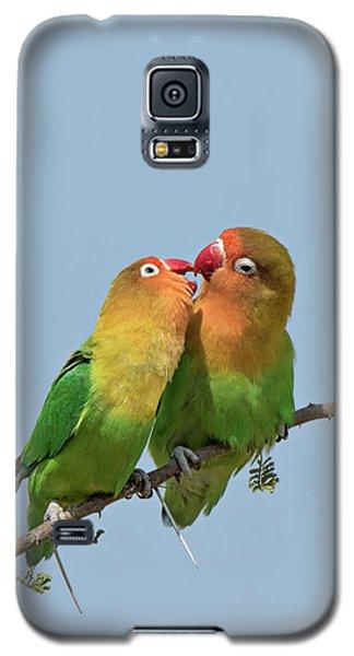 Lovebird Galaxy S5 Case - Africa, Tanzania, Serengeti by Charles Sleicher