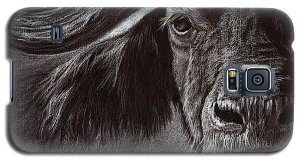 African Buffalo Galaxy S5 Case
