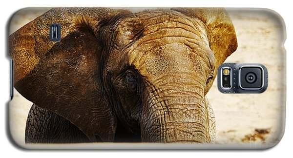 Galaxy S5 Case featuring the photograph African Elephant Behind A Hill by Nick  Biemans
