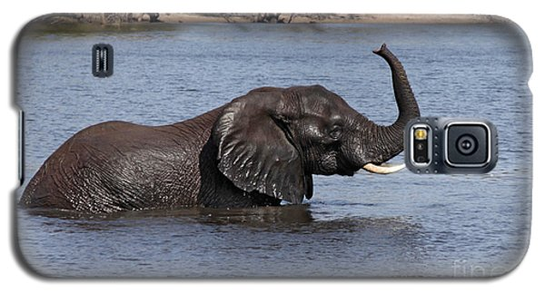 Galaxy S5 Case featuring the photograph African Elephant In Chobe River  by Liz Leyden