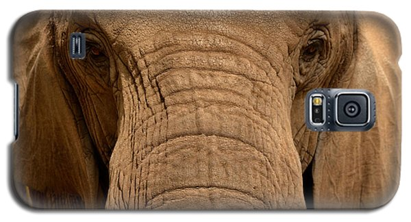 Galaxy S5 Case featuring the photograph African Elephant by Nadalyn Larsen