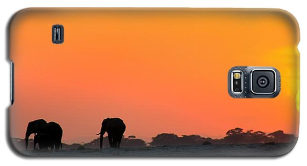 Galaxy S5 Case featuring the photograph African Elephant Sunset by Amanda Stadther