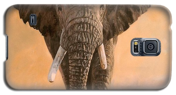 Elephant Galaxy S5 Case - African Elephants by David Stribbling