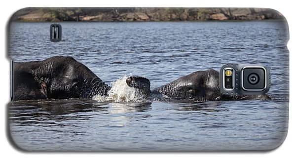 Galaxy S5 Case featuring the photograph African Elephants Swimming In The Chobe River Botswana by Liz Leyden