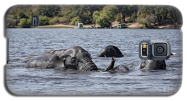 Galaxy S5 Case featuring the photograph African Elephants Swimming In The Chobe River by Liz Leyden