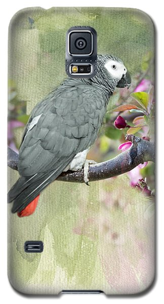 African Gray Among The Blossoms Galaxy S5 Case by Betty LaRue