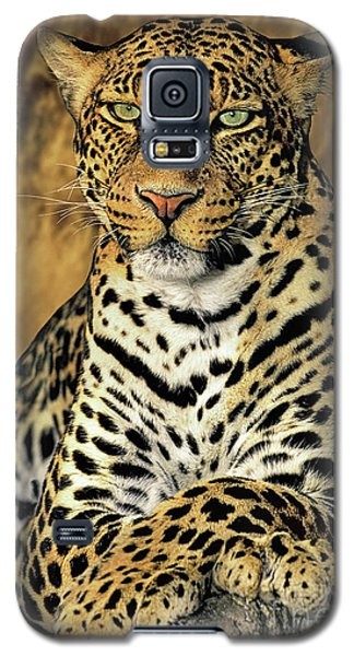 African Leopard Portrait Wildlife Rescue Galaxy S5 Case