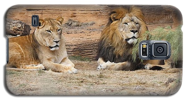 African Lion Couple 2 Galaxy S5 Case