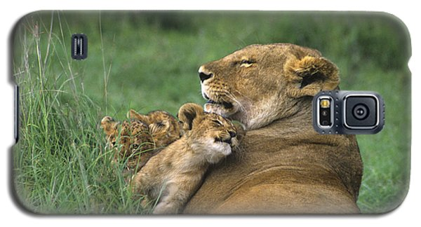 African Lions Mother And Cubs Tanzania Galaxy S5 Case