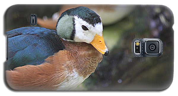 African Pygmy Goose Galaxy S5 Case by Jerry Bunger
