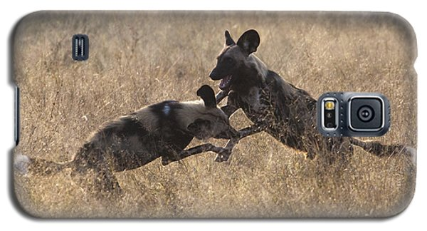 Galaxy S5 Case featuring the photograph African Wild Dogs Play-fighting by Liz Leyden