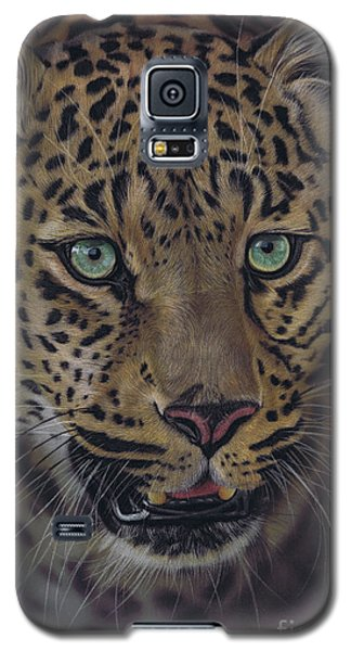 After Dark All Cats Are Leopards Galaxy S5 Case