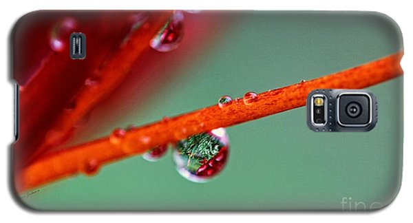 After Rain Galaxy S5 Case by Yumi Johnson