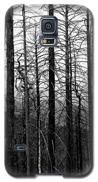 After The Fire Galaxy S5 Case by Joe Kozlowski