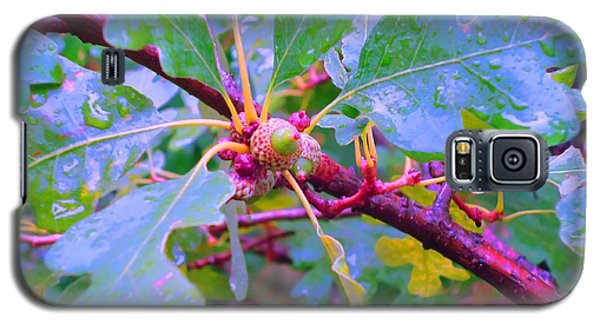 Galaxy S5 Case featuring the photograph After The Morning Rain by Ann Johndro-Collins