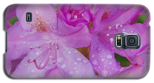 Galaxy S5 Case featuring the photograph After The Rain by Aimee L Maher Photography and Art Visit ALMGallerydotcom