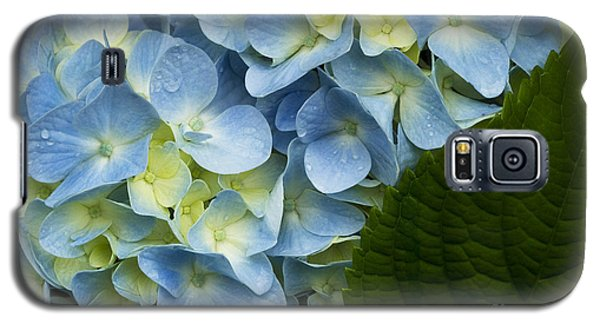 After The Rain Galaxy S5 Case by Carrie Cranwill