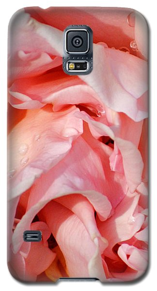 After The Rain Galaxy S5 Case by Jessica Tookey
