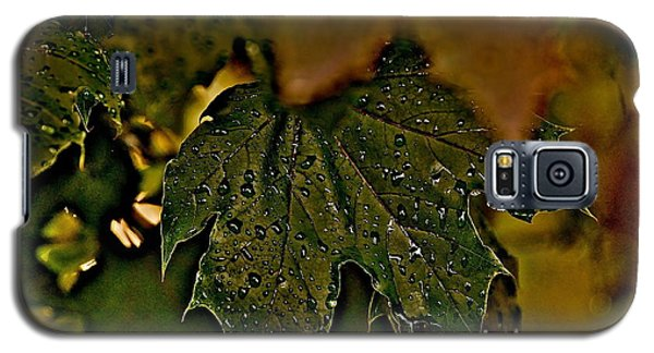 After The Rain Galaxy S5 Case