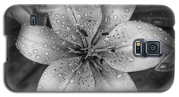 Lily Galaxy S5 Case - After The Rain by Scott Norris