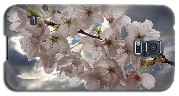 After The Spring Shower Galaxy S5 Case by Inge Riis McDonald