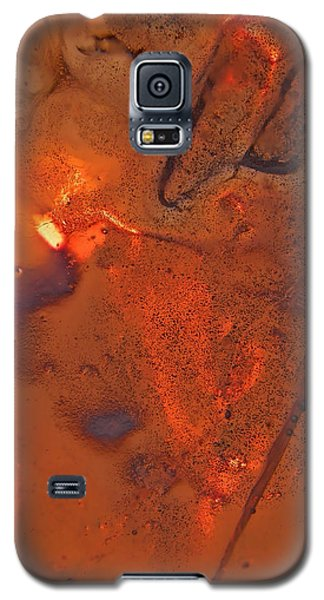 Afterglow Galaxy S5 Case