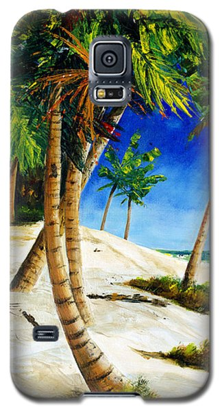 Afternoon Beach Walk Galaxy S5 Case