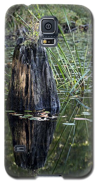 Galaxy S5 Case featuring the photograph Afternoon Light by Andrew Pacheco