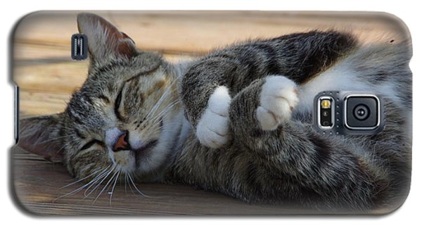 Galaxy S5 Case featuring the photograph Afternoon Nap by Tannis  Baldwin