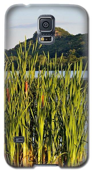 Afternoon Walk Galaxy S5 Case