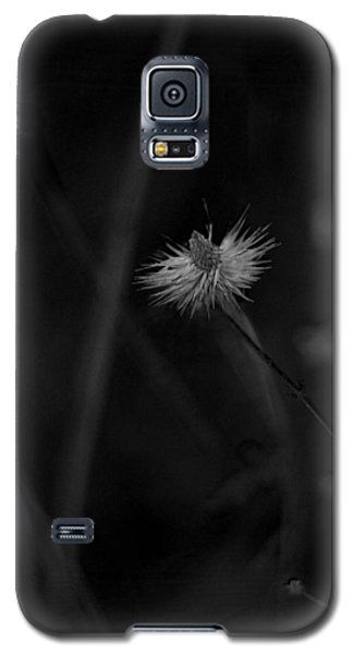 Galaxy S5 Case featuring the photograph Afterword by Rebecca Sherman