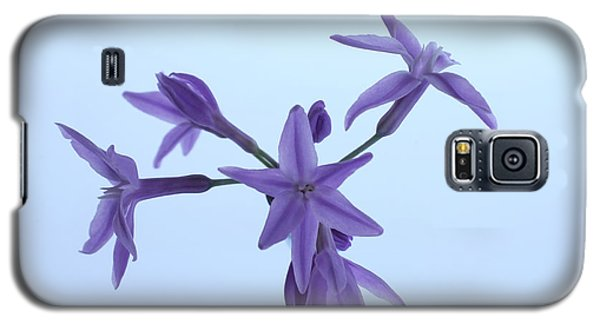 Agapanthus Blossoms Galaxy S5 Case by Richard Stephen