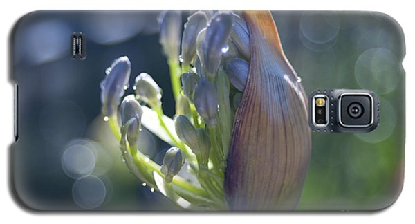 Agapanthus Coming To Life Galaxy S5 Case by Haleh Mahbod