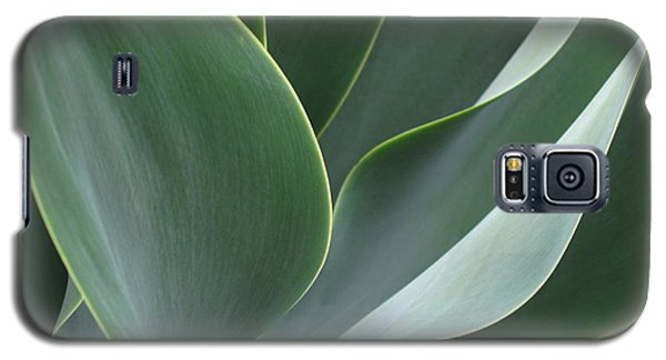 Agave 3 Galaxy S5 Case
