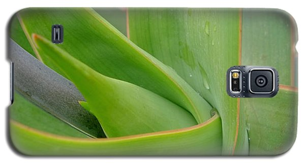 Agave Flow Galaxy S5 Case