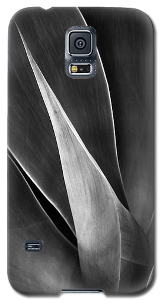 Agave No 3 Galaxy S5 Case