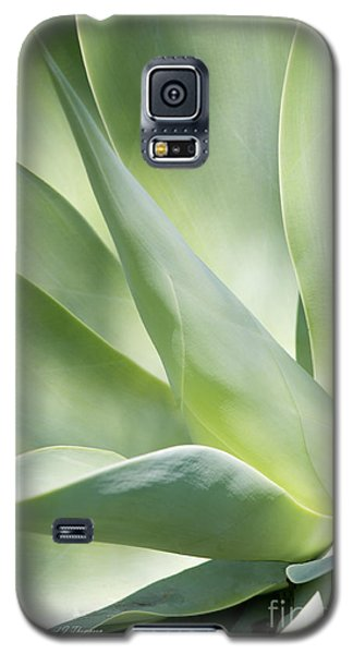 Agave Plant 2 Galaxy S5 Case