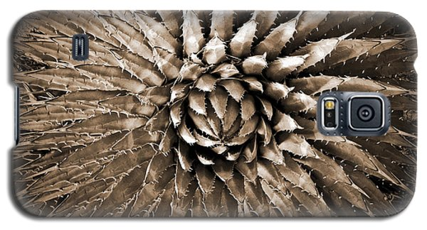 Agave Spikes Sepia Galaxy S5 Case by Alan Socolik