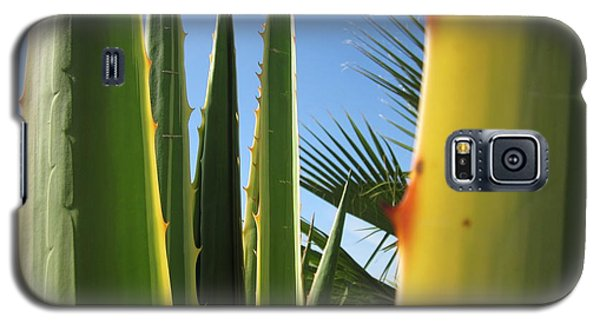 Agaves And Palm Trees Galaxy S5 Case