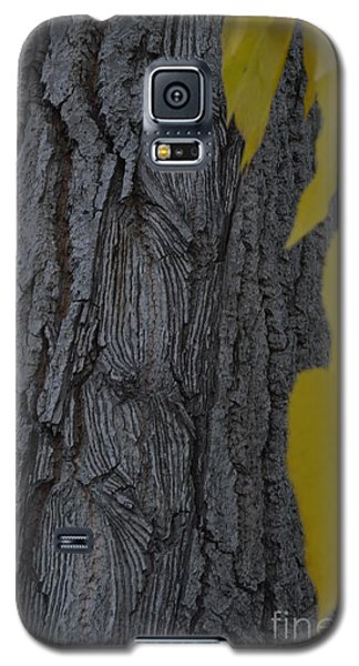Galaxy S5 Case featuring the photograph Age Lines by Brian Boyle