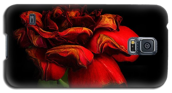 Ageing Beauty Galaxy S5 Case