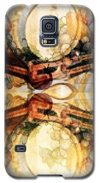 Aging Barrels Galaxy S5 Case by PainterArtist FIN