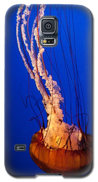 Aglow Within Galaxy S5 Case