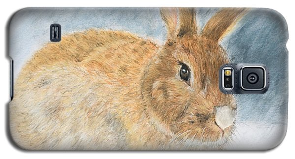 Agouti Pet Rabbit Galaxy S5 Case