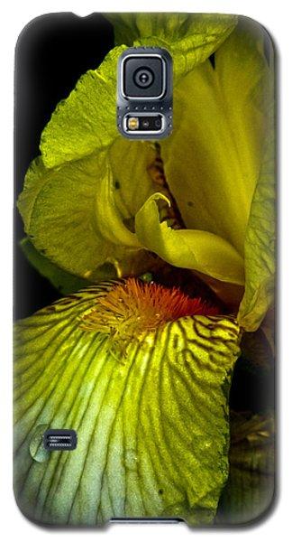 Galaxy S5 Case featuring the photograph Aieris by Joel Loftus