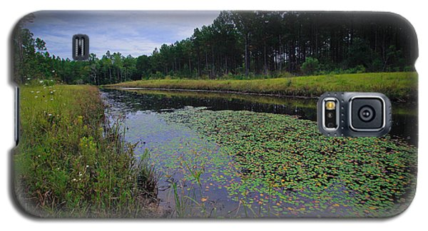 Galaxy S5 Case featuring the photograph Alabama Country by Julie Andel