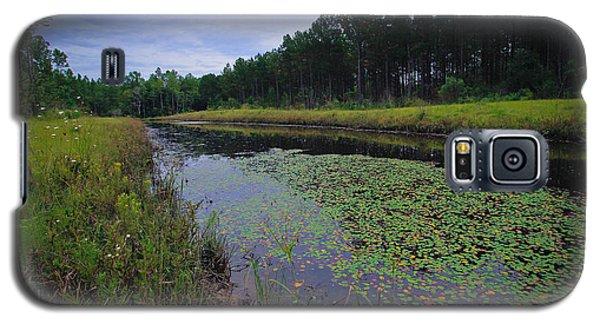 Alabama Country Galaxy S5 Case
