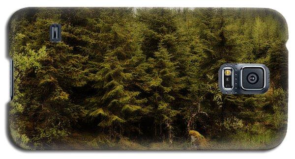 Galaxy S5 Case featuring the photograph Alaska Beauty by Davina Washington