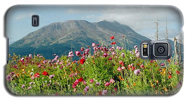 Alaska Flowers In September Galaxy S5 Case by Denyse Duhaime