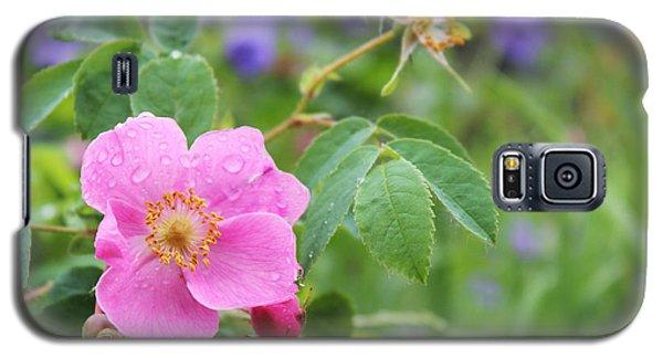 Alaska Wildflowers Galaxy S5 Case